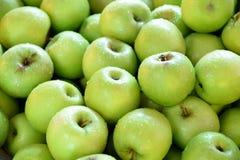 Πράσινα μήλα Στοκ φωτογραφία με δικαίωμα ελεύθερης χρήσης