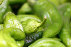 πράσινα μακρο πιπέρια τσίλι Στοκ εικόνα με δικαίωμα ελεύθερης χρήσης