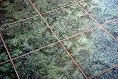 πράσινα μαρμάρινα κεραμίδι&alph Στοκ φωτογραφία με δικαίωμα ελεύθερης χρήσης
