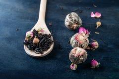 Πράσινα, μαύρα, floral, βοτανικά φύλλα τσαγιού Στοκ Φωτογραφία