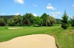 πράσινα μεγάλα δέντρα άμμου κοιλωμάτων χλόης γκολφ σειράς μαθημάτων Στοκ Φωτογραφία