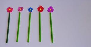 Πράσινα μολύβια και λουλούδια σε ένα άσπρο υπόβαθρο Στοκ Εικόνες