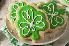 Πράσινα μπισκότα ημέρας του ST Patricks τριφυλλιού Στοκ Εικόνες
