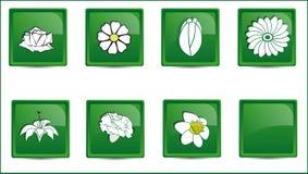 Πράσινα λουλούδια εικονιδίων κουμπιών απεικόνιση αποθεμάτων