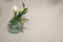 Πράσινα λουλούδια Στοκ Φωτογραφίες