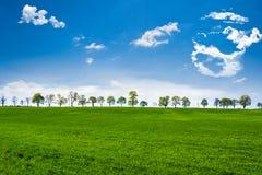 Πράσινα πεδία Στοκ Φωτογραφίες