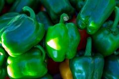 Πράσινα πιπέρια κουδουνιών, φυσικό υπόβαθρο Στοκ φωτογραφία με δικαίωμα ελεύθερης χρήσης