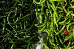 Πράσινα πιπέρια τσίλι Στοκ φωτογραφία με δικαίωμα ελεύθερης χρήσης