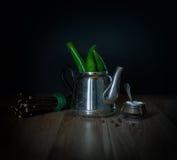 Πράσινα πιπέρια τσίλι teapot μετάλλων Στοκ φωτογραφία με δικαίωμα ελεύθερης χρήσης