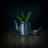 Πράσινα πιπέρια τσίλι teapot μετάλλων Στοκ Εικόνες