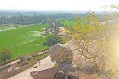 Πράσινα τομείς ή πεζούλια ρυζιού στο χωριό Hampi Φοίνικες, ήλιος, τομείς ρυζιού, μεγάλες πέτρες σε Hampi Τροπικός εξωτικός στοκ εικόνες