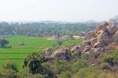 Πράσινα τομείς ή πεζούλια ρυζιού στο χωριό Hampi Φοίνικες, ήλιος, τομείς ρυζιού, μεγάλες πέτρες σε Hampi Τροπικός εξωτικός στοκ φωτογραφίες με δικαίωμα ελεύθερης χρήσης