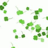 πράσινα τριφύλλια Στοκ Εικόνες