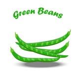 Πράσινα φασόλια από τον κήπο Στοκ Φωτογραφίες