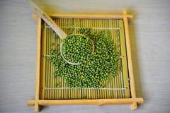 πράσινα φασόλια στο ξύλινο υπόβαθρο Στοκ Εικόνες