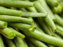 Πράσινα φασόλια Στοκ Φωτογραφίες