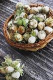 Πράσινα φουντούκια σε ένα καλάθι στοκ φωτογραφία με δικαίωμα ελεύθερης χρήσης