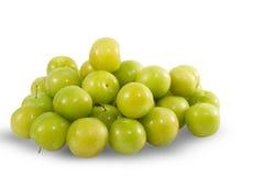 Πράσινα φρούτα δαμάσκηνων Στοκ Εικόνα