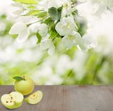 Πράσινα φρούτα της Apple στο ξύλινο υπόβαθρο Στοκ Εικόνα
