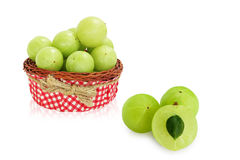 Πράσινα φρούτα Amla, ndian ριβήσιο Στοκ εικόνες με δικαίωμα ελεύθερης χρήσης