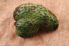 πράσινα φρούτα annona Στοκ Φωτογραφία