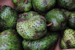 πράσινα φρούτα annona Στοκ Εικόνα