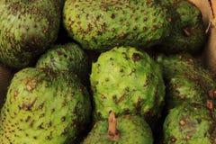 πράσινα φρούτα annona Στοκ εικόνα με δικαίωμα ελεύθερης χρήσης