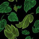Πράσινα φύλλα σε ένα μαύρο υπόβαθρο άνευ ραφής Στοκ εικόνα με δικαίωμα ελεύθερης χρήσης