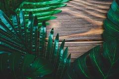 Πράσινα φύλλα σε ένα ξύλινο καφετί υπόβαθρο Στοκ Εικόνες