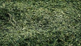 Πράσινα φύλλα τσαγιού που περιστρέφονται αργά φιλμ μικρού μήκους