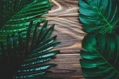 Πράσινα φύλλα φοινικών σε ένα ξύλινο υπόβαθρο Στοκ εικόνες με δικαίωμα ελεύθερης χρήσης