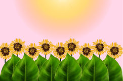 Πράσινα φύλλα και γραφικό υπόβαθρο λουλουδιών Στοκ φωτογραφία με δικαίωμα ελεύθερης χρήσης