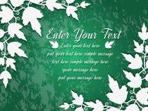 πράσινα φύλλα σημύδων ανασκόπησης Στοκ Εικόνες