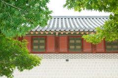 Πράσινα φύλλα σφενδάμου με το παλαιό κορεατικό παλάτι Στοκ φωτογραφία με δικαίωμα ελεύθερης χρήσης