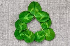 Πράσινα φύλλα του τριφυλλιού στο υπόβαθρο του υφάσματος λινού στοκ φωτογραφίες