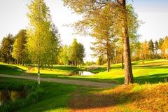 Πράσινα χλόη και δέντρα κατά μήκος της πορείας Στοκ Φωτογραφίες