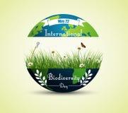 Πράσινα χλόη και λουλούδια μέσα στη γη για το διεθνές υπόβαθρο ημέρας βιοποικιλότητας διανυσματική απεικόνιση