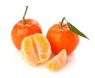 πράσινα ώριμα tangerines φύλλων Στοκ φωτογραφίες με δικαίωμα ελεύθερης χρήσης