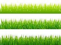 Πράσινα borfers χλόης στο άσπρο υπόβαθρο Στοκ εικόνα με δικαίωμα ελεύθερης χρήσης