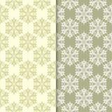 Πράσινα floral υπόβαθρα ελιών άνευ ραφής σύνολο προτύπων Στοκ Φωτογραφίες