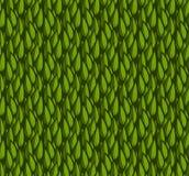 Πράσινα leasves Στοκ εικόνες με δικαίωμα ελεύθερης χρήσης