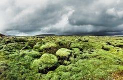 Πράσινα mossy troll τοπία της νότιας Ισλανδίας Στοκ Φωτογραφίες