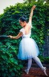 Πράσινες άμπελοι, ηθοποιοί που ασκούν το μπαλέτο στοκ φωτογραφίες με δικαίωμα ελεύθερης χρήσης