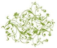 πράσινες άμπελοι προτύπων &la διανυσματική απεικόνιση