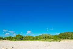 Πράσινες δέντρα και άμμος κάτω από έναν μπλε ουρανό Στοκ Φωτογραφίες