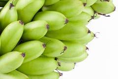 Πράσινες ακατέργαστες μπανάνες αυγών Oganic στα άσπρα τρόφιμα φρούτων μπανανών MAS Pisang υποβάθρου υγιή που απομονώνονται Στοκ φωτογραφίες με δικαίωμα ελεύθερης χρήσης