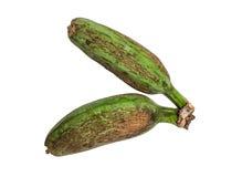Πράσινες ακατέργαστες μπανάνες κλείστε επάνω Στοκ Εικόνα