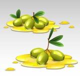 Πράσινες ελιές στο πετρέλαιο διανυσματική απεικόνιση