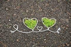 πράσινες καρδιές δύο στοκ φωτογραφίες με δικαίωμα ελεύθερης χρήσης