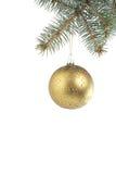πράσινες κρεμώντας ερυθρελάτες Χριστουγέννων κλάδων σφαιρών Στοκ Εικόνα